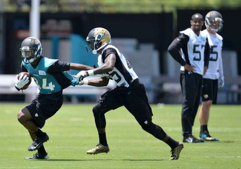 Jacksonville Jaguars make cuts to get roster to NFL-mandated 53 players