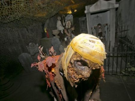 Visit the best haunted house attractions in phoenix this for 13th floor net