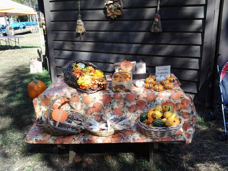 Sweetwater valley campground pumpkin patch