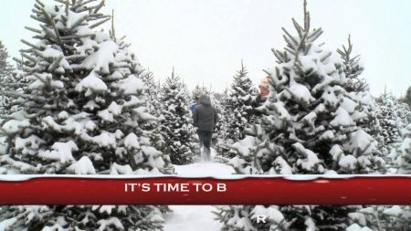 Best places to get a Christmas tree in Columbus, Ohio