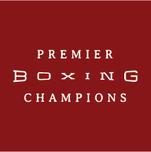Premier Boxing Champions Berto vs Lopez 2015 03 13 HDTV x264 NWCHD