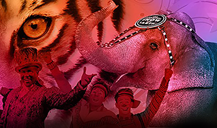 Ringling Bros. and Barnum & Bailey Circus tickets at Citizens Business Bank Arena in Ontario
