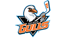 San Diego Gulls tickets at Valley View Casino Center, San Diego