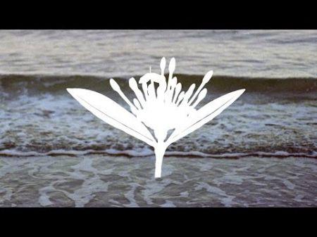 Copeland announce retrospective U.S. tour