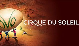 Cirque du Soleil - OVO tickets at Sprint Center, Kansas City