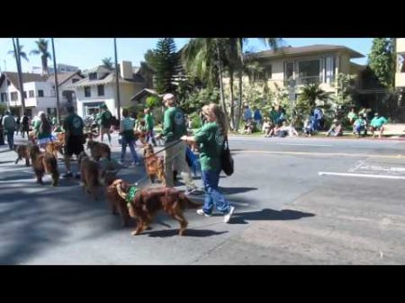 Best free family St. Patricks Day events in San Diego 2017