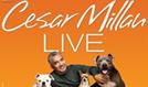 Cesar Millan tickets at City National Grove of Anaheim, Anaheim