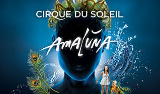 Amaluna by Cirque du Soleil tickets at Royal Albert Hall, London