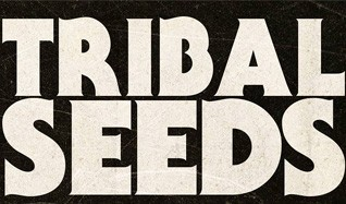 Tribal Seeds tickets at Jannus Live in Saint Petersburg